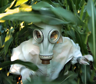 7 Things You Need to Know about GMOs  Gmo-omg-documentary-320