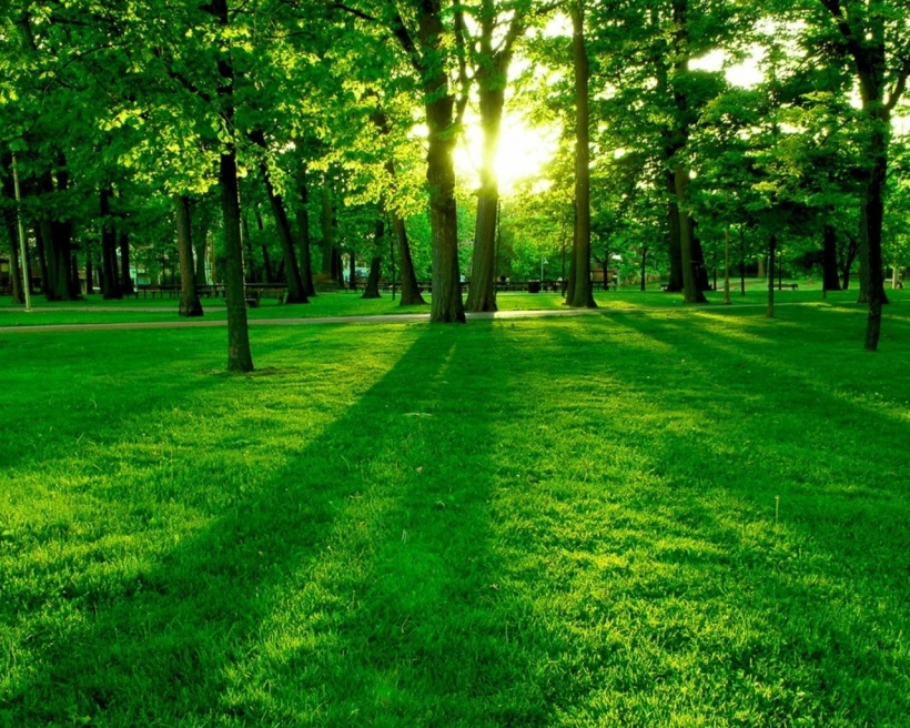 Image from SustainabilitySPU