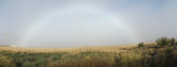 """FOG RAINBOW"" FROM WISE OWL PAT"